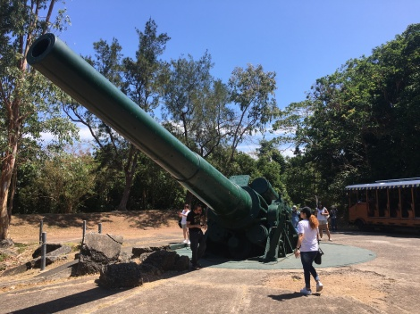 Where the Japanese forces had that propaganda picture after capturing Corregidor. Banzai!